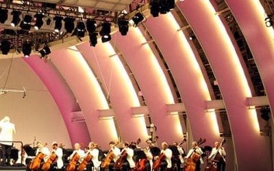 Orchestrating Settlement: A Symphony of Sound and Color